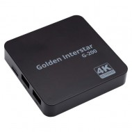 Goldern Interstar G-200